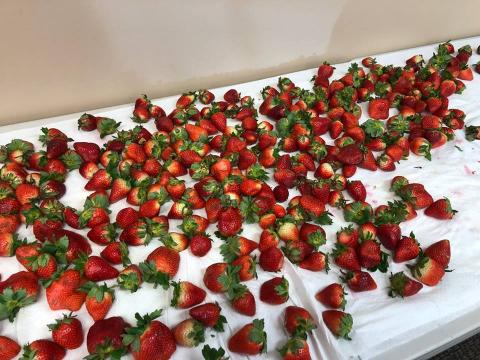 Pictures of Strawberries on a white table